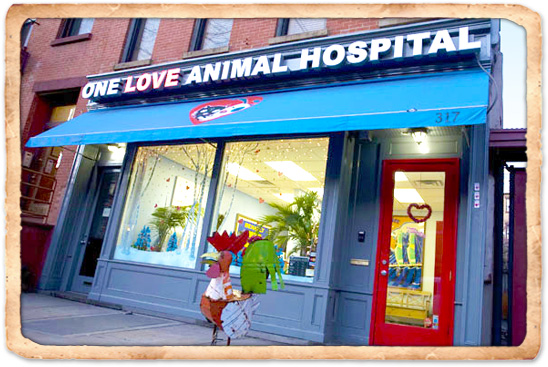 One Love Animal Hospital Location